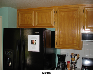Remove and Replace Kitchen Remodel- before photo